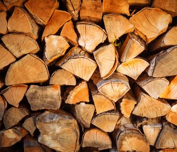 Brennholzverkauf Baumschule Hamm Forstbaumschulen Weihnachtsbäume
